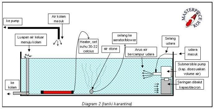 Diagramkarantina2