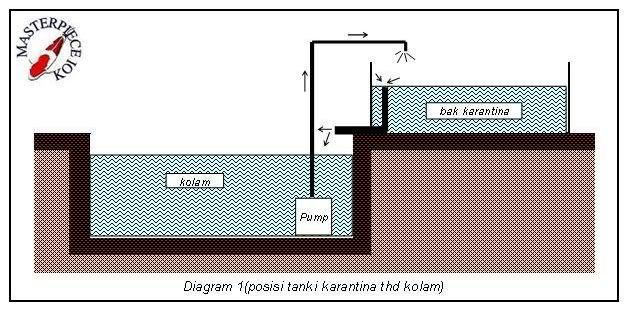 diagramkarantina1