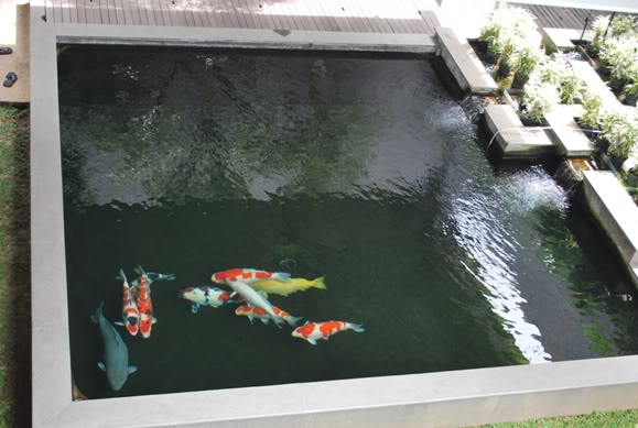 kolam yohanes Yusuf