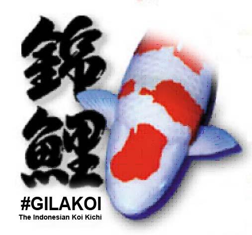 gilakoi logo