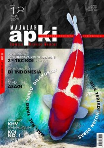cover-APKI-web