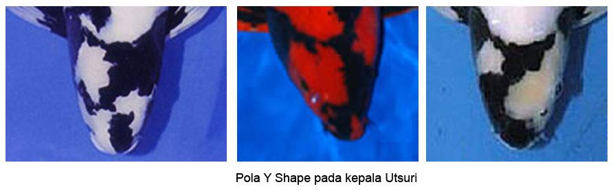 y shape