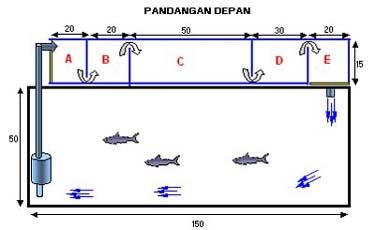 6600 Ide Desain Saringan Aquarium Paling Keren Untuk Di Contoh