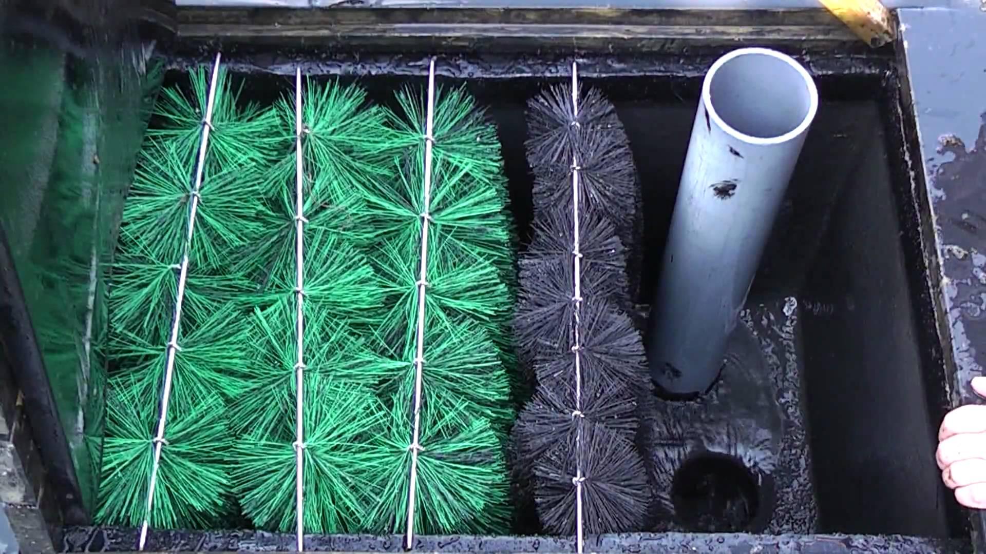 Mengenal Berbagai Jenis Filterasi untuk Kolam Koi