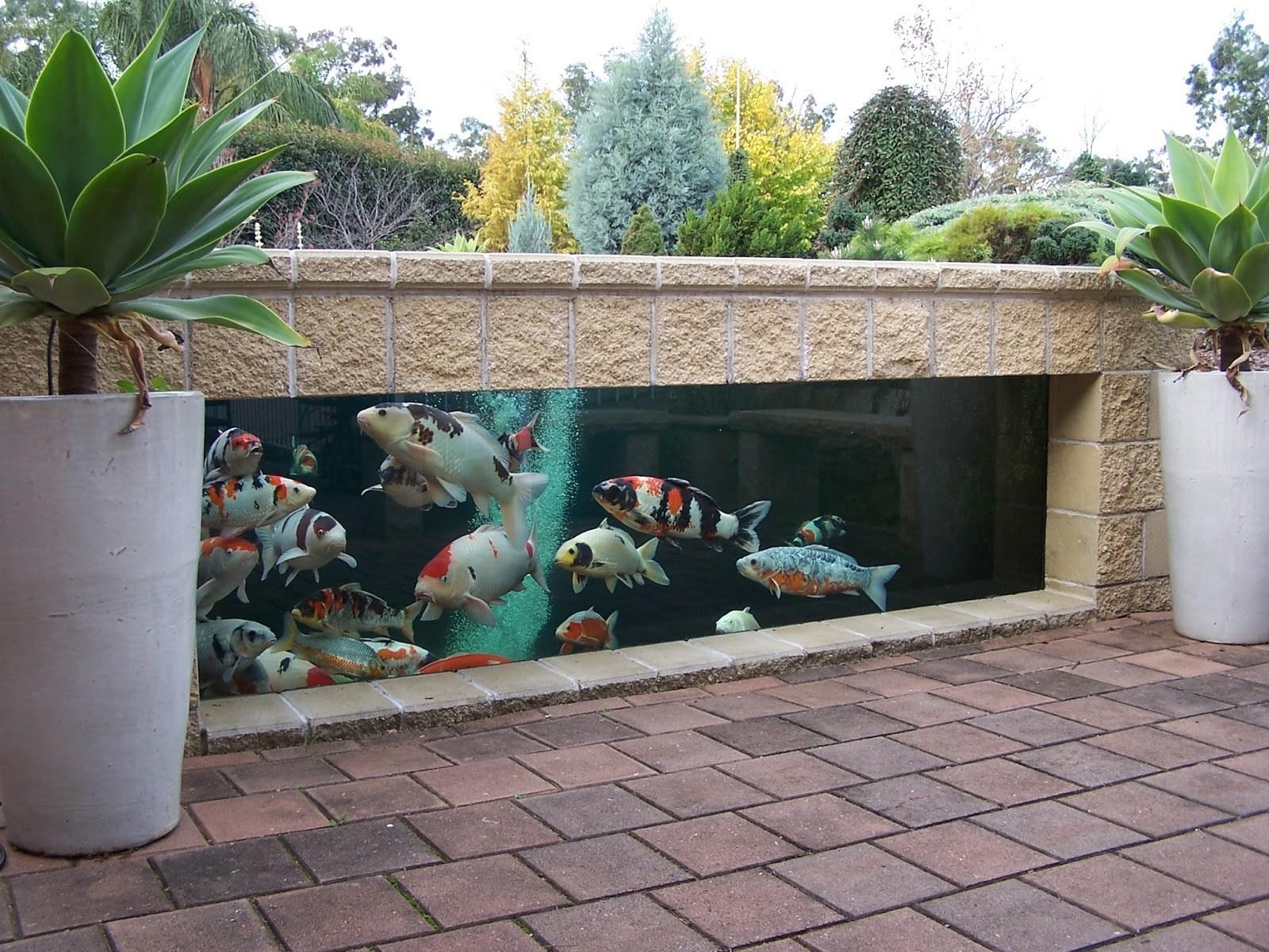 kolam kaca